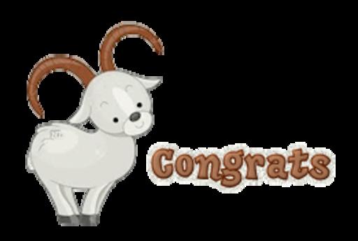 Congrats - BighornSheep