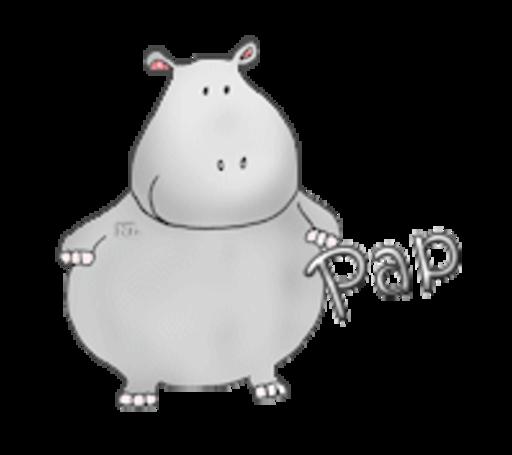 Pap - CuteHippo2018