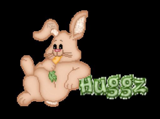 Huggz - BunnyWithCarrot