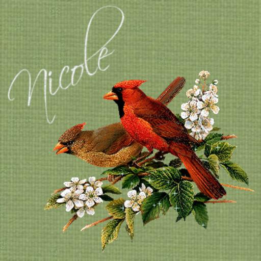 Nicole - Birds-Sandra-051816