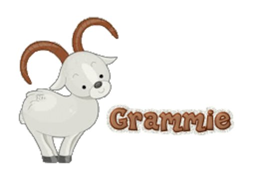 Grammie - BighornSheep