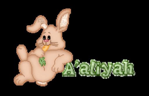 A'aliyah - BunnyWithCarrot