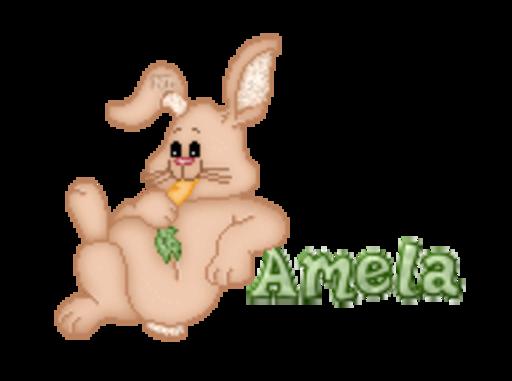Amela - BunnyWithCarrot