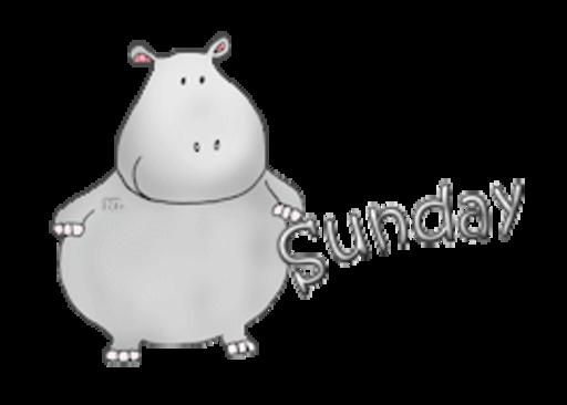 DOTW Sunday - CuteHippo2018