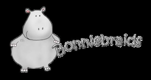Bonniebraids - CuteHippo2018