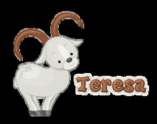 Teresa - BighornSheep