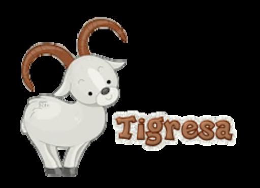 Tigresa - BighornSheep