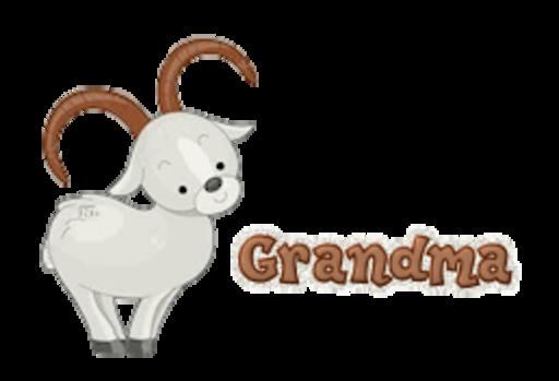Grandma - BighornSheep