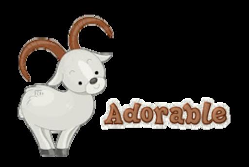 Adorable - BighornSheep