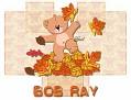 Bob Ray-gailz1106-autumn_16bear43.jpg