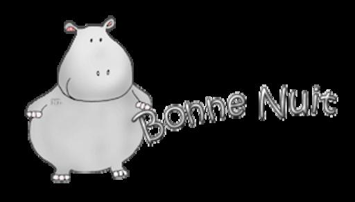 Bonne Nuit - CuteHippo2018