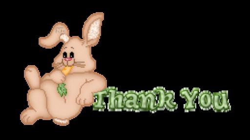 Thank You - BunnyWithCarrot
