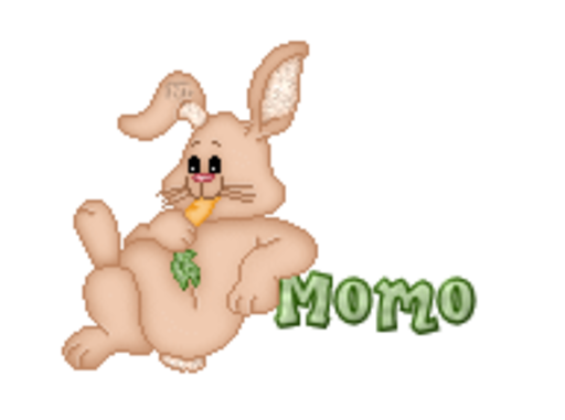 Momo - BunnyWithCarrot