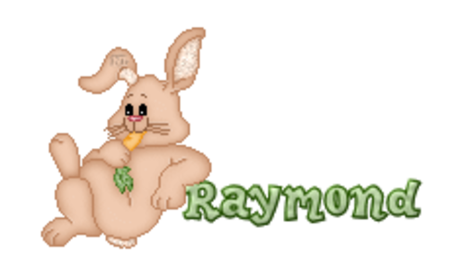 Raymond - BunnyWithCarrot