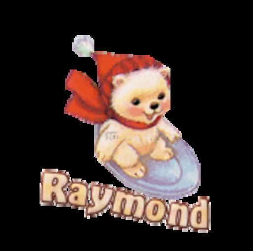 Raymond - WinterSlides