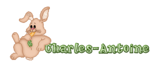 Charles-Antoine - BunnyWithCarrot