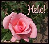 Hello013