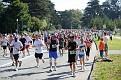 Throngs of Runners