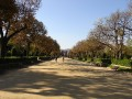 006 o parque
