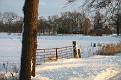 Snow 2010 Almen (17)