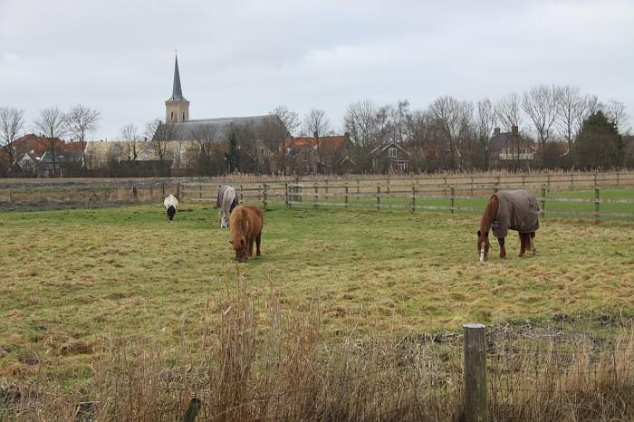 Schouwen-Duiveland (73) Dreischor