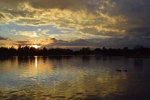 Lake Balboa Sunset