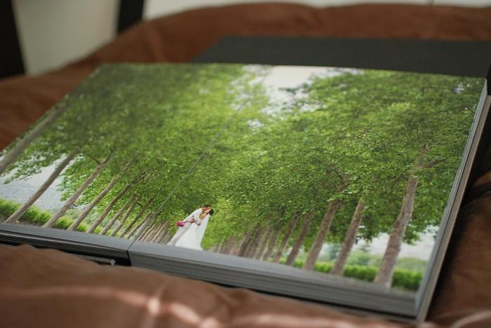 Introducing our wedding album photo 14