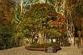20081018 - NY Botanical Gardens - 22-sm