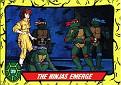 Teenage Mutant Ninja Turtles #029