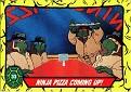 Teenage Mutant Ninja Turtles #033
