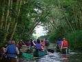 Canoe Trail - N Walsham & Dilham canal 002