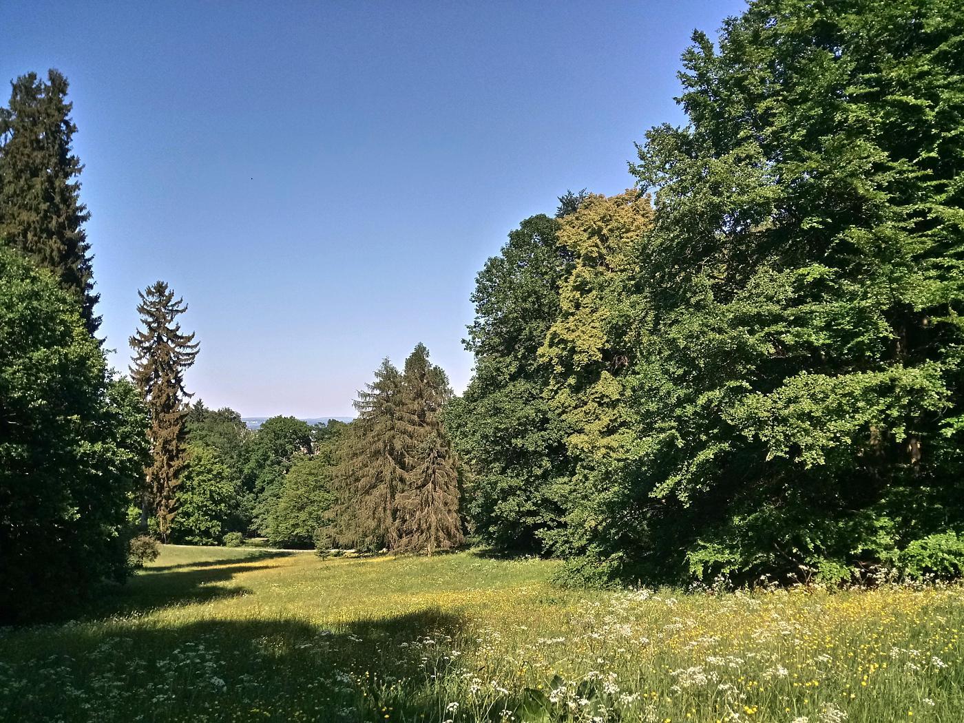 Parkwiesen