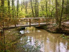 Brücke über Furlbach