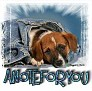 1ANoteForYou-blujeanpup-MC