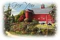 farmforyou