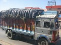 Traveling Overland from Delhi to Jaipur, India.