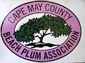 Cape May County Beach Plum Association / I am a member here also and was assisting with this table also...