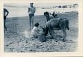 Me, with donkey, Brighton?, 1962