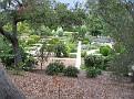 LA Arboretum - Herb Garden2