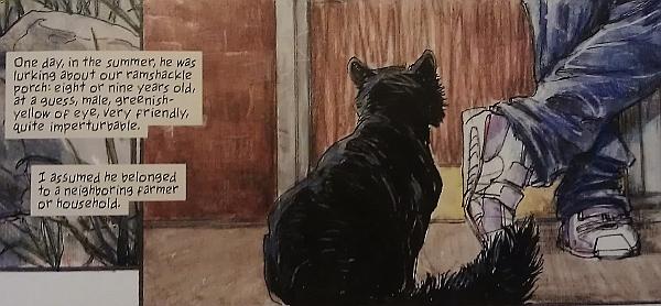Creatures Of The Night, av Neil Gaiman