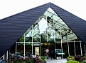 1 The Berkenhof, The best Vlinder Butterfly Garden