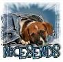 1NiceSends-blujeanpup-MC
