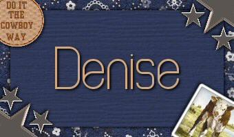 Denise - Cowboy1.jpg