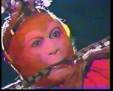 Monkey King 37