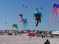 Definitely turning into a kite festival.