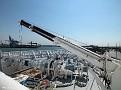 BALMORAL bow crane 20120527 005