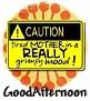1GoodAfternoon-caution-MC
