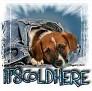 1It'sColdHere-blujeanpup-MC