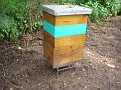 Honey Bee Hives in Mexico   Thank you Octavio Jimenez and your brother Isaac Jimenez in Mexico who tends to the bees  (9)