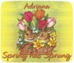 Adriana-gailz-bunnies and tulips